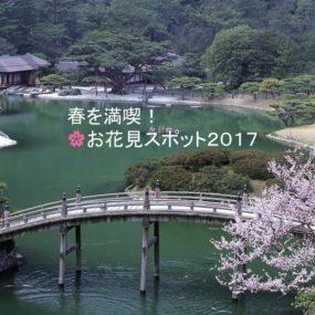 2017年4月号お花見スポット